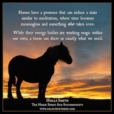 The Horse Spirit And Synchronicity Celestine Vision